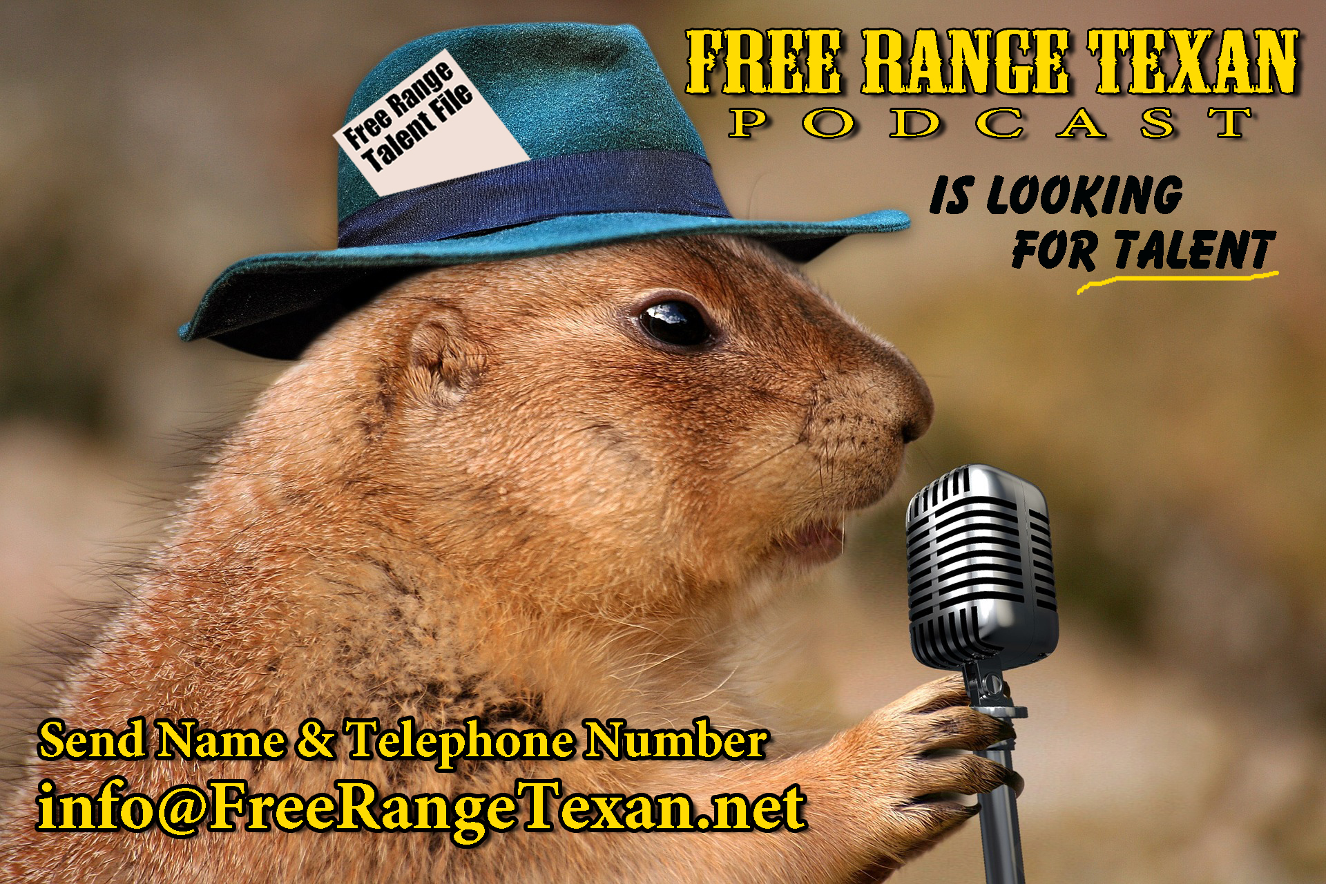 Free Range Texan talent file